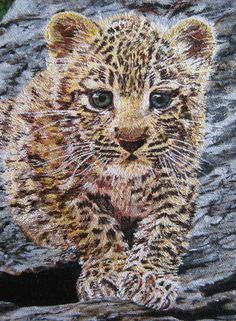 baby leopard  Oil on canvas