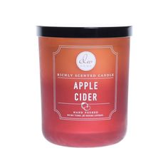 2 DW Home WINTER FROSTED LEAVES Scented Medium Candle 8.5 oz ea