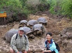 """(Puerto Ayora, Santa Cruz Island) ...   Charles Darwin Research Station, breeding program, """"good place to learn about the variety of species on the islands before setting out""""."""