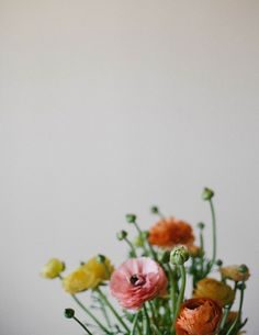 yellow, pink, orange and green flowers Green Flowers, My Flower, Flower Power, Beautiful Flowers, Simple Flowers, Cactus, Floral Photography, Green Life, Belle Photo