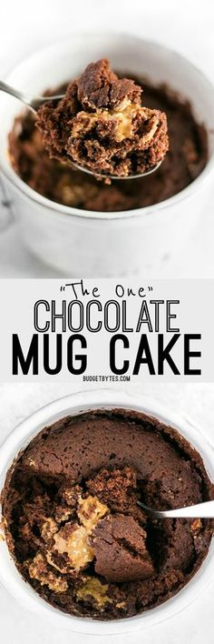 In just two minutes you can have this perfect single serving chocolate mug cake to quiet that sweet tooth. BudgetBytes.com