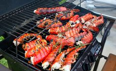 Learn how to cook perfect lobster tails! We also give you lobster tails storage instructions and give you step by step cooking instructions. Grilling Recipes, Fish Recipes, Cooking Recipes, Healthy Recipes, Healthy Foods, Grilled Lobster Recipes, How To Cook Lobster, Lobster Tails, Cooking Instructions