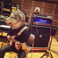 DJ playing the guitar 😋🎸👀 #rehearsal #rehearsals #manwithamission #mwam #wolf #wolves #rock #band #music #dj #santamonica #spearrib