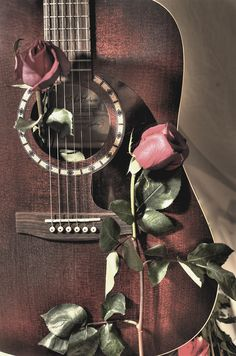 guitar and roses - photography and music With sunflowers. Music Wallpaper, Tumblr Wallpaper, Music Love, Music Is Life, Jeane Manson, Acoustic Guitar Photography, Music Artwork, Guitar Art, Pink Brown