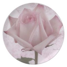 Soft Pink Rose Flower Plate