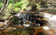 Murrindindi Scenic Reserve, Yea, VIC