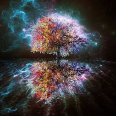 lightering tree of colors