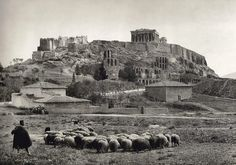 Man herding his sheep in the shadow of the Acropolis, early 1900s. This photograph was taken by the Swiss photographer Fred Boissonas. Mister Boissonas is known for his incredible photographs of ancient Greece and it's beautiful nature. TheAcropolis of Athensis an ancientcitadellocated on a high rocky outcrop above the city ofAthensand containing the remains of severalancient buildingsof great architectural and historic significance.