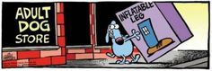 Ideas For Funny Clean Jokes Humor Dogs Cartoon Jokes, Cartoon Dog, Funny Cartoons, Haha Funny, Funny Dogs, Funny Animals, Funny Stuff, Hilarious, Funny Things