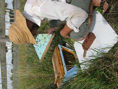 Less Invasive Beekeeping | Anarchy Apiaries