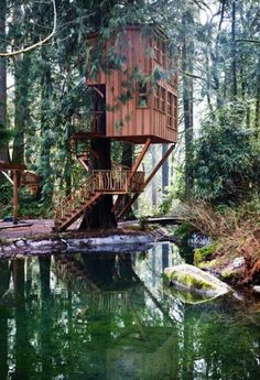 Treehouse Point, Washington!! I want to go there and stay in a treehouse for my vacation with the love of my life someday!