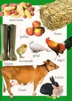 Learn Polish, Polish Language, English Vocabulary, Logo Nasa, Education, Learning, Speech Language Therapy, Poland, Vocabulary