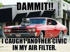 Damn Civics!!