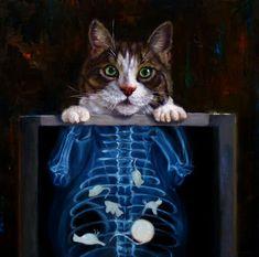 14x14 Cat Scan by Lucia Heffernan