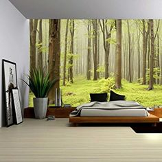 Wall26 - Green Misty Forest Mural - Wall Mural, Removable Sticker, Home Decor - 66x96 inches