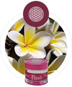 Verzaubertes Gesicht - Flash 24h Creme Beauty Flash, Blush, Cosmetics, Face, Blusher Brush, Beauty Products, Blushes, Blush Dupes, Drugstore Makeup