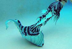 My tail fory mermaid costume Siren Mermaid, Mermaid Cove, Mermaid Art, Mermaid Paintings, Mermaid Crafts, Tattoo Mermaid, Vintage Mermaid, Real Mermaids, Mermaids And Mermen