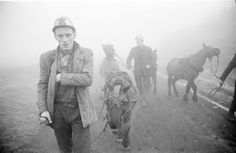 MINERS AND PIT PONIES, COUNTY DURHAM, WINTER 1964-1965