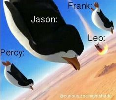 Percy Jackson (Memes and More) - Number 144 - Wattpad