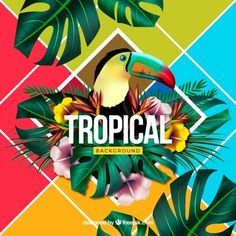 Colorful tropical background with realistic design Free Vector - Magazine Design Inspiration, Logo Design Inspiration, Design Plat, Vibes Tumblr, Jungle Art, Tropical Background, Summer Backgrounds, Decoupage Vintage, Tropical Design