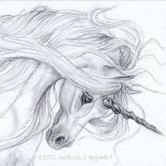 How to draw flying horse realistic unicorn drawings unicorn drawing in pencil gray unicorn graphite draw . how to draw flying horse Fantasy Drawings, Horse Drawings, Realistic Drawings, Animal Drawings, Fantasy Art, Art Drawings, Dragon Drawings, Unicorn Sketch, Unicorn Drawing