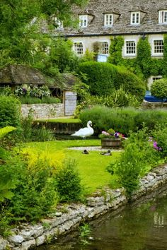 English country garden with green shrubs, hedges, beautiful stone walls and a stream, Bibury UK