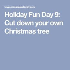 Holiday Fun Day 9: Cut down your own Christmas tree