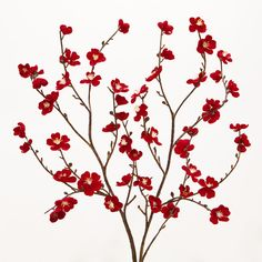 Cost Plus World Market Red Velvet Plum Blossoms, Set of 2 ($16) ❤ liked on Polyvore featuring home, home decor, floral decor, flowers, backgrounds, fillers, plants, accents, foliage and floral and faux flowers