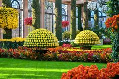 To visit Longwood Gardens is a bit like walking into a painting—the famed horticulturalist's paradise is just that breathtaking. From October 22-November 20, the Chrysanthemum Festival offers a feast for the eyes, featuringover 17,000 of the colorful flowers in incredible arrangements. Don't miss the Thousand Bloom Mum, a single plant that has 1,500 perfectly-arranged blooms (and counting). You'll never look at those garden center mums the same way again. Read more at ...