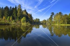 Summer Lake - Wall Mural & Photo Wallpaper - Photowall