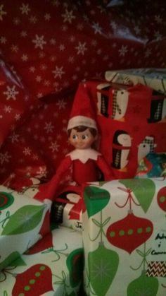Alfie hiding in the presents