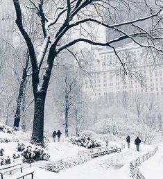 NY blizzard Jan16