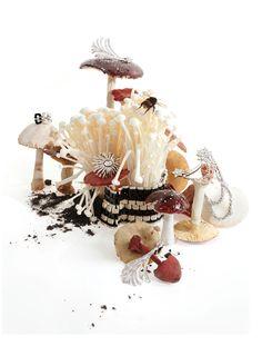 Serlin Associates — Kevin Mackintosh — Portfolio still life photography mushrooms and jewellery and accessories