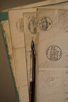 Porte plume et timbre royal-1- © Laurence David--| Flickr: partage de photos!