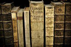 LANGSOM. En gammel bog fandt denne uge vej tilbage til biblioteket i Auckland, den var blevet udlånt fra i 1948. Låneren var i byen for at besøge sin familie - og returnere en bog. (Arkiv) - Foto: Peter Hove Olesen