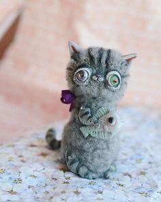 Stray Cats, Cat Doll, Owl, Kitty, Bird, Animals, Little Kitty, Animales, Animaux