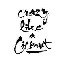 😛 #quotes #coconut #bohoinspiration #love #gypsy #bohostyle #travel #bohochic…