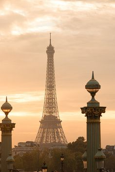 Paris Photography Eiffel Tower Sunset Golden by rebeccaplotnick