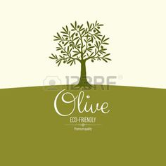 nature vintage: Conception de l'étiquette d'olive Illustration