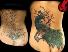 Peacock coverup tattoo by Jackie Rabbit.