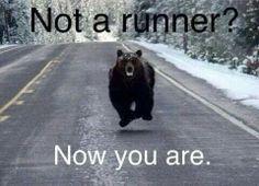 Run, Forest, run...lol