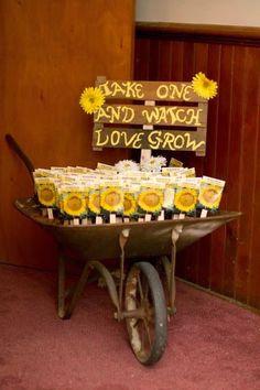 watch love grow favors Yellow Daisies, Garden Wedding, Diy Wedding, Fall Wedding, Wedding Dress, Trendy Wedding, Wedding Colors, Wedding Themes, Wedding Decorations