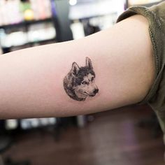 Husky head tattoo on the right inner arm. Tattoo Artist: Ilwol Hongdam