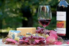 Charcuterie Raclette, Wine Drinks, Alcoholic Drinks, Red Wine Benefits, Health Benefits, Red Wine Stains, Wine Tasting, Wine Tasting, Wine Pairings