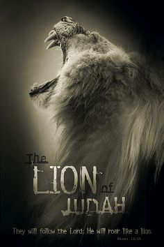 "Powerful #christian poster. #Lion of Judah. Order it here: http://www.lifeposters.org/shop/lion-judah-poster/  #Bible verse: ""They will follow the #Lord, He will roar like a Lion."" (Hosea 11:10)"