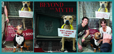 BEYOND THE MYTH -- A Film About Breed Discrimination -- Unfairly known as violent killers, Pit Bulls have suffered from the stigma of negative media coverage that has lead to city-wide bans across the country. This breed-specific legislation has torn pets away from families, and killed thousands of innocent dogs in cities like Denver, Miami, Cincinnati, and San Francisco.  The film investigates the myths associated with these breeds, challenges the idea that they are inherently vicious, ...