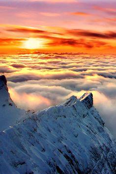 sunrise above the clouds Beautiful World, Beautiful Places, Landscape Photography, Nature Photography, Photos Voyages, Above The Clouds, Beautiful Sunrise, Nature Pictures, Pretty Pictures
