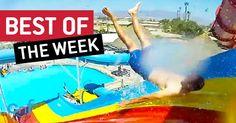 Os melhores vídeos da última semana #09