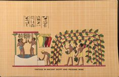 Life In Ancient Egypt, Vintage World Maps