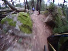 Nowra Downhill Mountain Biking (http://inprvt.com/index.php/socialnetwork/videos)